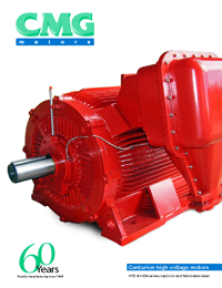CMG Electric Motor High Voltage Series Catalogue