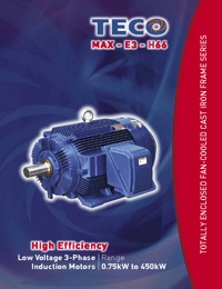 TECO Electric Motors Induction Motors Low Voltage 3 Phase Series Catalogue