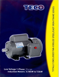 TECO Electric Motors Induction Motors Low Voltage Single Phase Series Catalogue